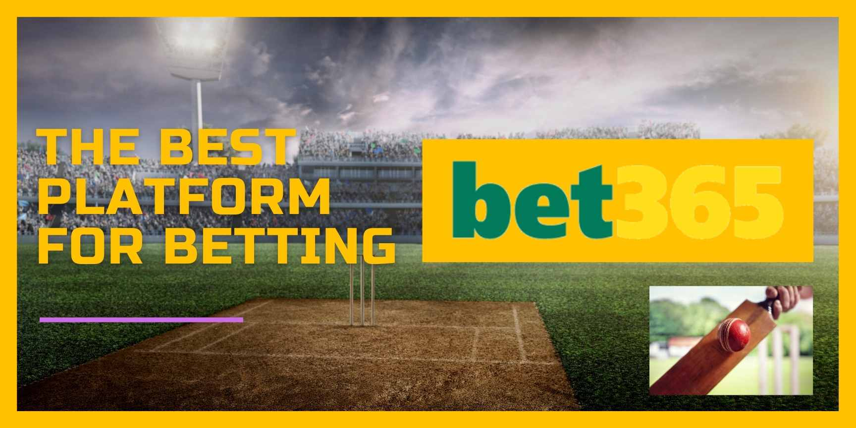 cricket bet365